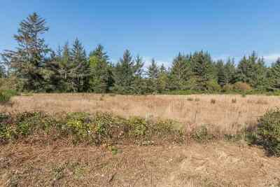 Crescent City Residential Lots & Land For Sale: 2860 Lake Earl Drive