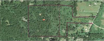 Crescent City Residential Lots & Land For Sale: 1333 E Jefferson