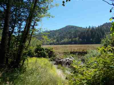 Klamath Residential Lots & Land For Sale: 700 Hunter Creek Road