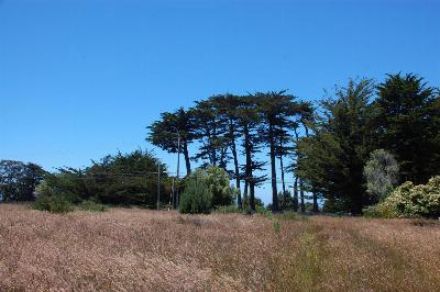 Mendocino, Fort Bragg, Caspar, Little River, Albion, Westport, Comptche, Elk, Navarro Residential Lots & Land For Sale: 13751 Point Cabrillo Drive