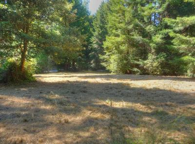 Mendocino, Fort Bragg, Caspar, Little River, Albion, Westport, Comptche, Elk, Navarro Residential Lots & Land For Sale: 23531 Shady Lane