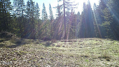 Comptche CA Residential Lots & Land For Sale: $1,100,000