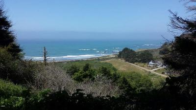 Mendocino, Fort Bragg, Caspar, Little River, Albion, Westport, Comptche, Elk, Navarro Residential Lots & Land For Sale: 24910 Ponderosa Drive