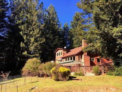 Little River Single Family Home For Sale: 40580 Little River Airport Road