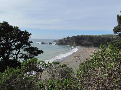 Mendocino, Fort Bragg, Caspar, Little River, Albion, Westport, Comptche, Elk, Navarro Residential Lots & Land For Sale: Navarro Bluff Road