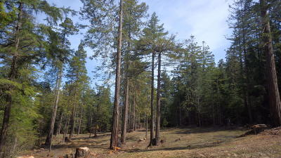 Mendocino, Fort Bragg, Caspar, Little River, Albion, Westport, Comptche, Elk, Navarro Residential Lots & Land For Sale: 29550 Simpson Lane