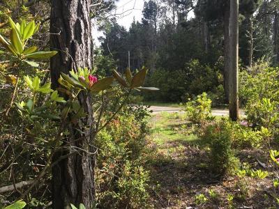 Mendocino, Fort Bragg, Caspar, Little River, Albion, Westport, Comptche, Elk, Navarro Residential Lots & Land For Sale: 43050 Little Lake Road