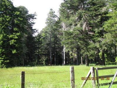 Mendocino, Fort Bragg, Caspar, Little River, Albion, Westport, Comptche, Elk, Navarro Residential Lots & Land For Sale: 31680 Johnson Lane