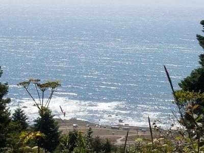 Mendocino, Fort Bragg, Caspar, Little River, Albion, Westport, Comptche, Elk, Navarro Residential Lots & Land For Sale: 40100 Seaview Court
