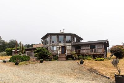 Mendocino Single Family Home For Sale: 8901 Frontage Road