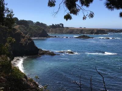 Mendocino, Fort Bragg, Caspar, Little River, Albion, Westport, Comptche, Elk, Navarro Residential Lots & Land For Sale: 11400 Lansing