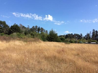 Mendocino, Fort Bragg, Caspar, Little River, Albion, Westport, Comptche, Elk, Navarro Residential Lots & Land For Sale: 23730 Bouldin Lane