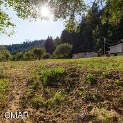 Fort Bragg Single Family Home For Sale: 21007 Company Ranch Road