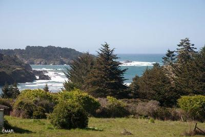 Mendocino Single Family Home For Sale: 44711 Pine Street