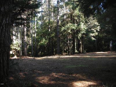 Mendocino, Fort Bragg, Caspar, Little River, Albion, Westport, Comptche, Elk, Navarro Residential Lots & Land For Sale: 13401 Sea Pines Lane