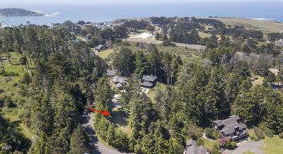 Mendocino, Fort Bragg, Caspar, Little River, Albion, Westport, Comptche, Elk, Navarro Residential Lots & Land For Sale: 44080 Ocean Vista Court #6