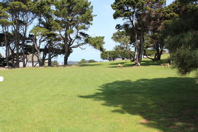 Mendocino CA Residential Lots & Land For Sale: $395,000