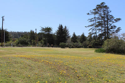 Fort Bragg CA Residential Lots & Land For Sale: $220,000