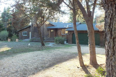 Mendocino Single Family Home For Sale: 42205 Caspar Little Lake Road