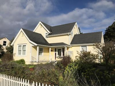 Mendocino Single Family Home For Sale: 45084 Little Lake Street