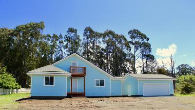 Mendocino County Single Family Home For Sale: 25025 Ward Avenue