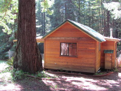 Albion Single Family Home For Sale: 32567 Albion Ridge Road