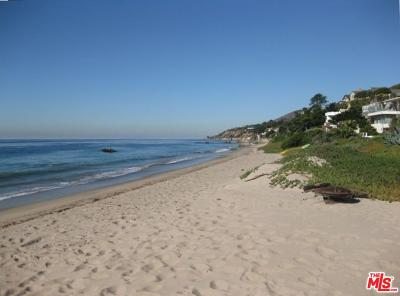 Malibu Single Family Home For Sale: 31671 Sea Level Drive