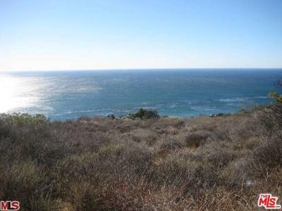 Malibu Residential Lots & Land For Sale: 32838 Camino De Buena Ventura