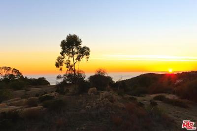 Malibu Residential Lots & Land For Sale: 21 Little Las Flores Parkhouse Lane