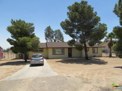 Yucca Valley Single Family Home For Sale: 3605 Warren Vista Avenue