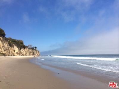 Malibu Condo/Townhouse For Sale: 29235 Heathercliff Road #11