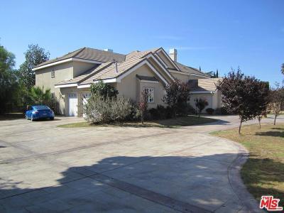 Northridge Single Family Home For Sale: 17632 Parthenia Street