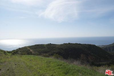 Malibu Residential Lots & Land For Sale: Briarbluff