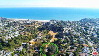 Pacific Palisades Single Family Home For Sale: 650 North Marquette Street