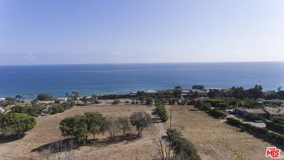 Malibu CA Residential Lots & Land For Sale: $10,788,000