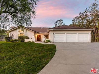 Calabasas Single Family Home For Sale: 24228 Dry Canyon Cold Creek Road