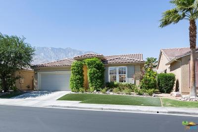 Palm Springs Single Family Home For Sale: 3587 Cliffrose Trails
