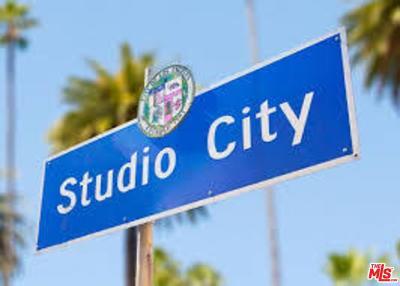 Studio City Single Family Home For Sale: 12826 Halkirk Street