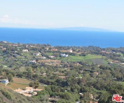 Malibu Rental For Rent: 30001 Zenith Pt. Road