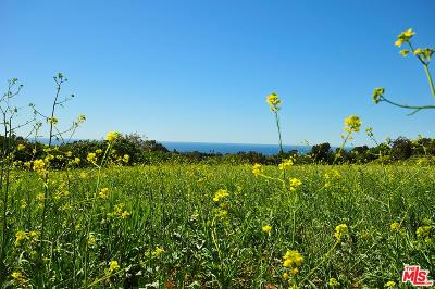 Malibu Residential Lots & Land For Sale: 5716 Kanan Dume Road