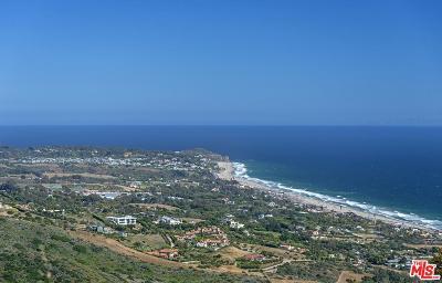 Malibu Single Family Home For Sale: 5800 Trancas Canyon Road