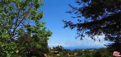 Topanga Single Family Home For Sale: 21530 Saddle Peak Road