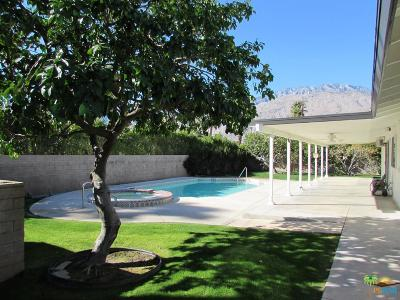 Palm Springs Rental For Rent: 2075 East Calle Felicia