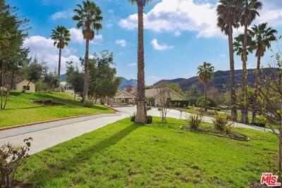 Calabasas Single Family Home For Sale: 24592 Mulholland Highway