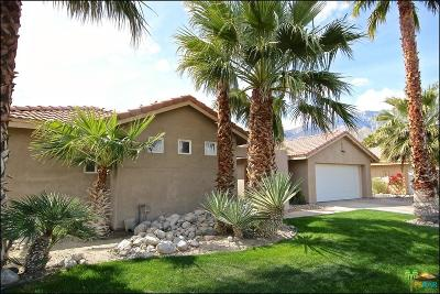 Palm Springs Single Family Home For Sale: 623 East Lily Street