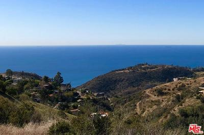 Malibu Residential Lots & Land For Sale: 2643 Corral Canyon Rd