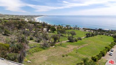 Malibu CA Residential Lots & Land For Sale: $9,995,000