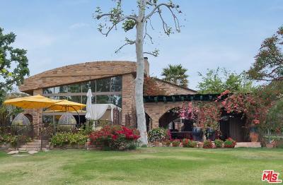 Single Family Home For Sale: 6166 Ramirez Canyon Road