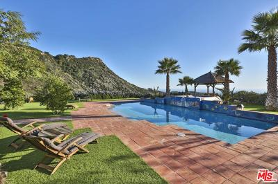 Single Family Home For Sale: 3030 Encinal Canyon Road