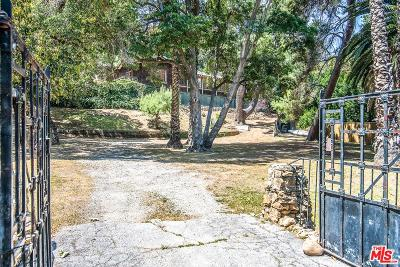 Hollywood Hills East (C30) Single Family Home For Sale: 2217 Canyon Drive